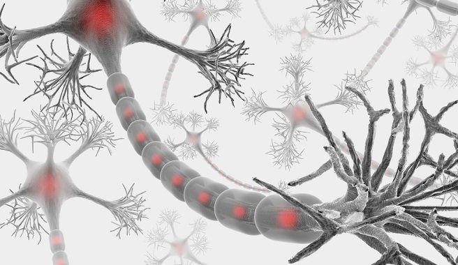 La Esclerosis Múltiple y sus efectos psicológicos