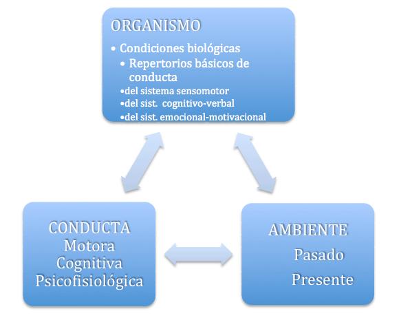 Modelo conductual-cognitivo-social